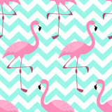 Cute exotic tropical seamless background with pink flamingos Stock Photos