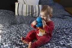 Cute fair baby girl sitting on bed sucking on large blue rubber duck royalty free stock photo