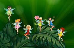 Cute fairies. Illustration of many fairies on leaves Stock Photos