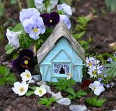 Cute fairy house with summer flowers of viola and daisy Stock Photos