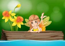 Cute fairy sitting on wooden log Stock Image