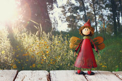 Cute fairy on wooden table in front of rural forest background Stock Image