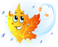 Cute falling maple leaf Stock Photography