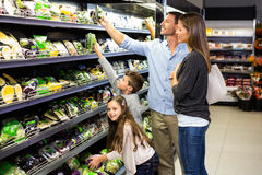Cute family choosing groceries together Royalty Free Stock Images