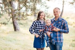 A cute family - mom, dad and son spend fun time outdoors in a beautiful pine forest.  royalty free stock photo