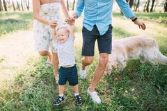 A cute family - mom, dad and son spend fun time outdoors with their dog.  stock photos