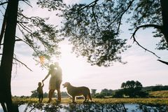 A cute family - mom, dad and son spend fun time outdoors with their dog.  stock image