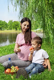 Cute family picnicking in the park Stock Photography