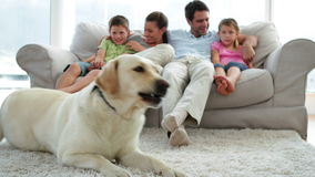 Cute family relaxing together on the couch with their dog on the rug stock video footage