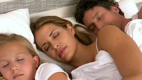 Cute family sleeping in their bed. At home stock footage