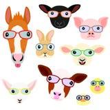 Cute farm animal babies face set. With eyeglasses vector illustration