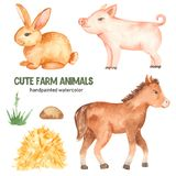 Cute farm animals horse, pig, rabbit watercolor