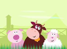 Cute farm animals - Pig, Cow and Sheep Royalty Free Stock Photo