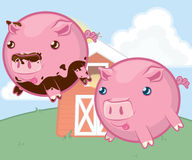 Cute Farm Animals Pigs Royalty Free Stock Image