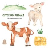 Cute farm animals watercolor, calf, lamb, hay