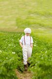 Cute farmer boy walking through the potato rows Stock Images