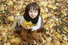 Cute fashionably dressed boy with maple leaves sitting on suitca Royalty Free Stock Images