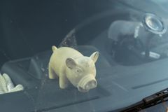 Cute fat pig toy behind a car`s windshield window. Sunny reflection royalty free stock images