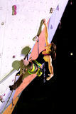 Cute female Athlete hanging on climbing Wall Stock Photography