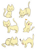 Cute female cat in action. Cute female cat in various action, create by Stock Photo