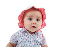 Cute female toddler royalty free stock photo