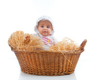 Cute female toddler in a straw basket stock image