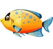 Cute fish cartoon. Illustration of Cute fish cartoon Stock Photo