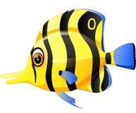 Cute fish cartoon. Illustration of Cute fish cartoon Royalty Free Stock Photo