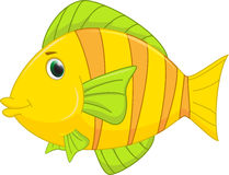 Cute fish cartoon. Illustration of cute fish cartoon isolated   on white Royalty Free Stock Photos
