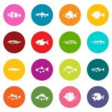 Cute fish icons many colors set Royalty Free Stock Image