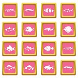 Cute fish icons pink Royalty Free Stock Photos