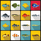 Cute fish icons set, flat style Royalty Free Stock Images