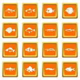 Cute fish icons set orange Royalty Free Stock Photo