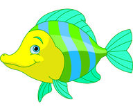 Cute Fish Stock Photo