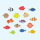 Cute fish  illustration icons set. Tropical fish, sea fish, aquarium fish. Cute fish  illustration icons set. Tropical marine, aquarium, colorful fish. Sea color Stock Image