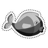 Cute fish isolated icon. Illustration design Stock Photo