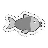 Cute fish isolated icon. Vector illustration design Stock Images