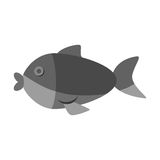 Cute fish isolated icon. Vector illustration design Royalty Free Stock Photo