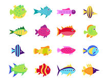 Cute fish vector illustration icons set. Fish flat style vector illustration. Fish icons isolated. Tropical fish, sea fish, aquarium fish set isolated on white Stock Images