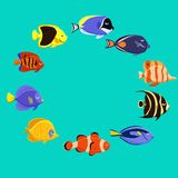 Cute fish vector illustration icons set. Tropical fish, sea fish,. Aquarium fish Stock Photos