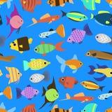 Cute fish vector illustration seamless pattern Stock Photography