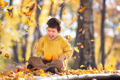 Cute five years old boy having fun in autumn park Stock Photo