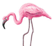 Cute flamingo Royalty Free Stock Photography