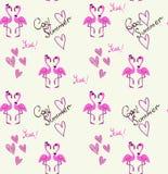 Flamingo couple pattern on white background Stock Photography