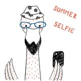 Cute flamingo with a smart phone. Hand drawn portrait of a cute funny flamingo in glasses with a smart phone, taking selfie. Isolated objects on white background Royalty Free Stock Photos