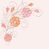 Cute floral  background. With pink flowers Stock Photography