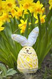 Cute floral decoration with Easter egg Royalty Free Stock Photography