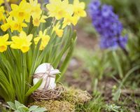 Cute floral decoration with Easter egg Stock Photo