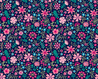 Cute Floral pattern. Royalty Free Stock Image