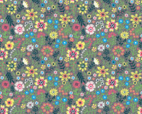 Cute Floral pattern. Stock Images